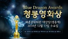Blue Dragon Awards
